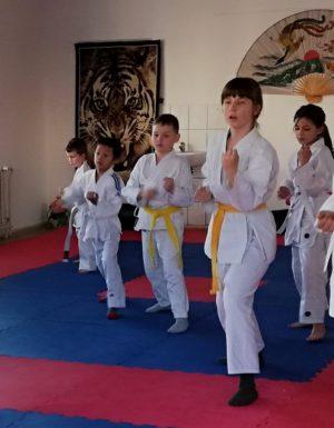 karate, sebeobrana, Wa-te jitsu